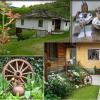 Заради кризата българите отидоха на село, а не в чужбина