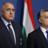 Колониален Цирк! Вчера Борисов подкрепи Орбан, а днес го ЗАКЛЕЙМИ И ПРЕДАДЕ! Ето кой дърпа конците на Марионетката Бочко: