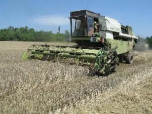 Държавата затваря пътя на обикновения фермер до помощите от ЕС