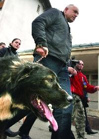 Бойко с гордост се хвали, че държи българите на каишка като кучета