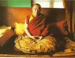 Лама от Тибет