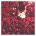 Алисия рози