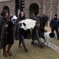 овцата Бойка