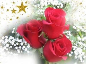 Поднесете една роза, но от сърце
