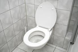 тоалетна1