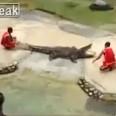 крокодил отхапва главата на дресьор