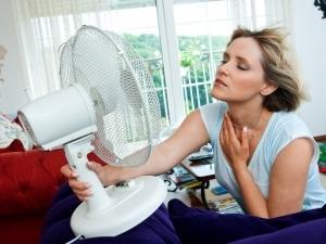 предпазване в жегата