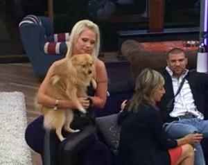 Еделвайс куче