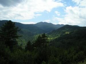 Цветелина Бориславова разора най-красивата планина в България, за да разшири незаконно лифта от местността Двата моста до връх Снежанка