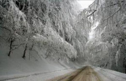сняг Петрохан