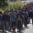 бежанци българия